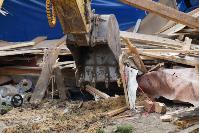 В тульском селе сносят незаконные цыганские постройки, Фото: 35