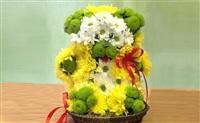 S`tet, салон цветов, Фото: 8