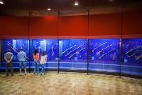 """Выставка """"Королевские игры"""" в музее оружия, Фото: 7"""