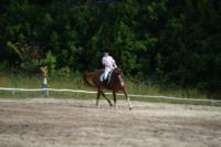 В Ясной поляне стартовал турнир по конному спорту, Фото: 38