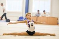 Спортивная гимнастика в Туле 3.12, Фото: 28