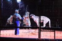 """Цирк """"Максимус"""" и тигрица в гостях у Myslo, Фото: 29"""
