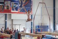 Тульские гимнастки готовятся к первенству России, Фото: 57