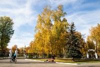 Золотая осень в Туле-2019, Фото: 74