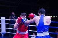 В Туле прошли финальные бои Всероссийского турнира по боксу, Фото: 97