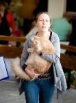 Выставка кошек. 4 и 5 апреля 2015 года в ГКЗ., Фото: 126