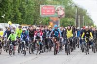 В Туле прошел большой велопарад, Фото: 176