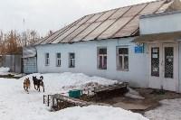 """Приют """"Любимец"""", 5.02.2016, Фото: 2"""