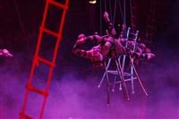 В Тульском цирке прошла премьера аква-шоу, Фото: 72
