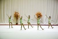 """Соревнования по художественной гимнастике """"Осенний вальс"""", Фото: 109"""