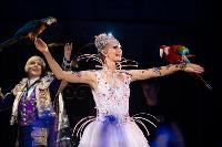 Шоу фонтанов «13 месяцев»: успей увидеть уникальную программу в Тульском цирке, Фото: 41