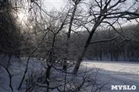 Зимняя сказка Платновского парка, Фото: 11