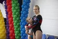 Соревнования по спортивной гимнастике на призы Заслуженных мастеров спорта , Фото: 28