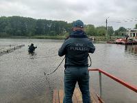 В пруду Центрального парка работала водолазная группа, Фото: 13