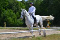 В Ясной поляне стартовал турнир по конному спорту, Фото: 123
