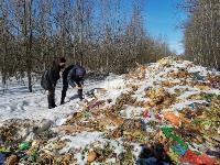 Под Тулой неизвестные сбросили в лесополосе несколько тонн гнилых овощей, Фото: 10