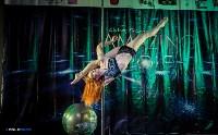 Pole dance в Туле: спорт, не имеющий границ, Фото: 11
