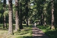 Летний день в богородицком парке, Фото: 51
