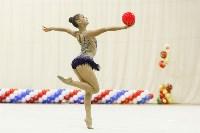 Художественная гимнастика. «Осенний вальс-2015»., Фото: 84