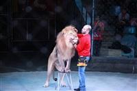Новая программа в Тульском цирке «Нильские львы». 12 марта 2014, Фото: 2