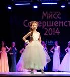 Мисс Совершенство-2014, Фото: 11
