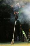 В Тульском цирке прошла премьера аква-шоу, Фото: 26