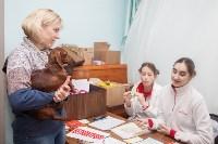 Всероссийская выставка собак 2017, Фото: 48