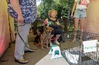 Фестиваль помощи животным в Центральном парке, Фото: 9
