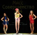 Мисс Совершенство-2014, Фото: 2
