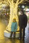 В Туле завершились новогодние гуляния, Фото: 3