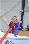Первый этап Всероссийских соревнований по спортивной гимнастике среди юношей - «Надежды России»., Фото: 32