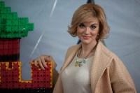 Туляки построили из конструктора башню Одоевских ворот Тульского кремля, Фото: 10