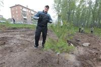 Высадка молодого леса, Фото: 44