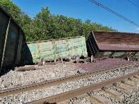 В Тульской области грузовой поезд сошел с рельсов, Фото: 20
