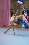 Соревнования по художественной гимнастике 31 марта-1 апреля 2016 года, Фото: 140