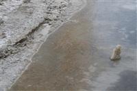 Прорыв водопровода на ул. Арсенальной. 22 января 2014, Фото: 7
