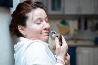 Экзотические животные в квартире, Фото: 15