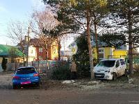 В Туле Mazda-3 сбила рябину и влетела в припаркованный Peugeot , Фото: 14