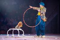 Шоу фонтанов «13 месяцев»: успей увидеть уникальную программу в Тульском цирке, Фото: 27