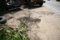 В Барсуках фура влетела в огород и сломала дерево, Фото: 10