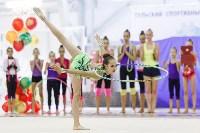 Художественная гимнастика. «Осенний вальс-2015»., Фото: 117