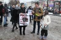 Более 8000 туляков требуют запретить убийство бездомных животных, Фото: 1