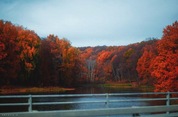 Осень на Воронке :)