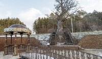 В Белеве после реставрации открылся Свято-Введенский Макариевский Жабынский мужской монастырь, Фото: 13