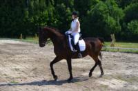 В Ясной поляне стартовал турнир по конному спорту, Фото: 13