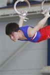 Первый этап Всероссийских соревнований по спортивной гимнастике среди юношей - «Надежды России»., Фото: 19