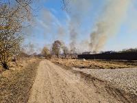 В Федоровке огонь с горящего поля едва не перекинулся на дома, Фото: 29