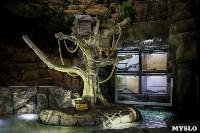 Тульский областной Экзотариум, Фото: 4