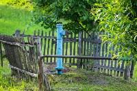 Фестиваль крапивы: пятьдесят оттенков лета!, Фото: 119
