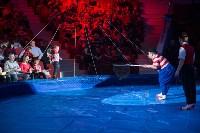 Тульский цирк, Фото: 88